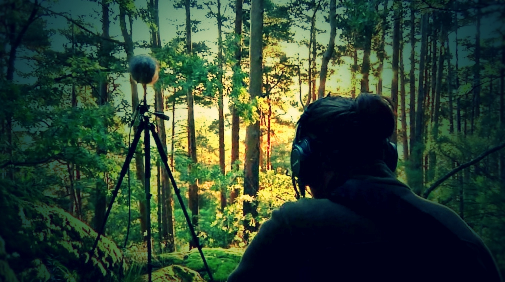 Taller de grabaciones de campo y diseño sonoro para audiovisuales. Juan Carlos Blancas